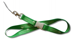 Lanyard with detachable buckle
